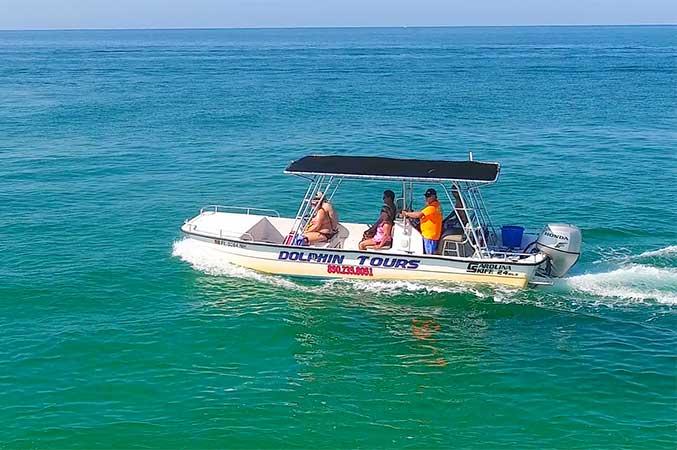 Dolphin Tours Fun In Panama City Beach
