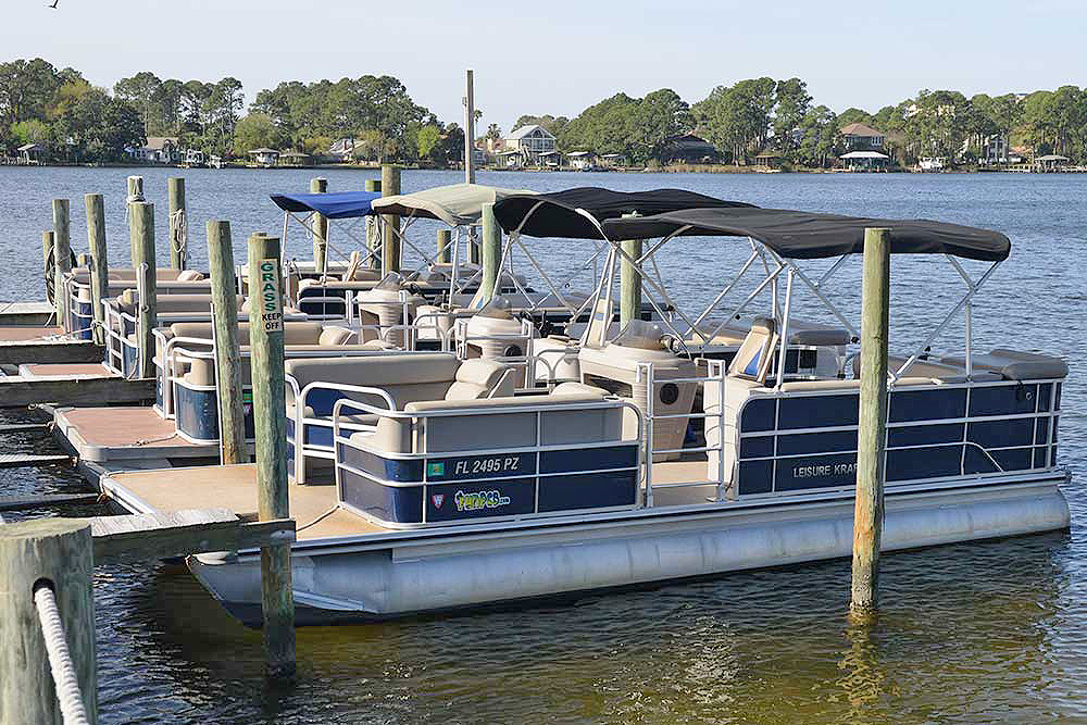 Pontoon Als Click Here Panama City Beach Dolphin Express