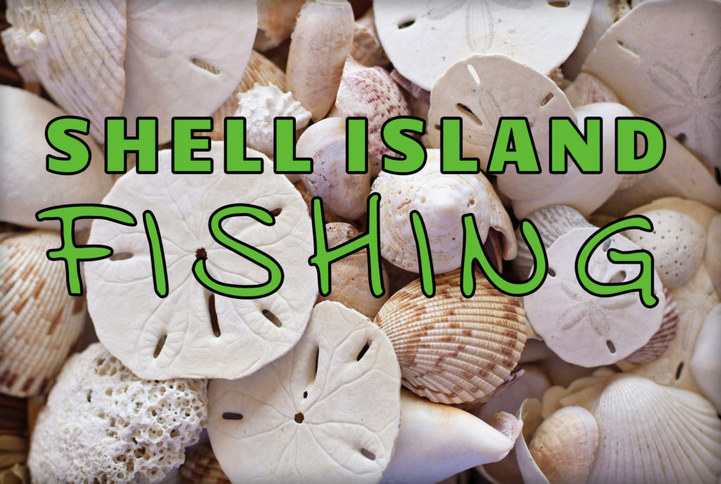 """Shell Island Fishing"" over shell background"